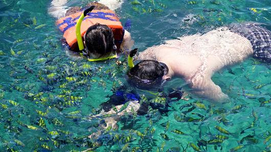三亚潜水一般有哪几类?
